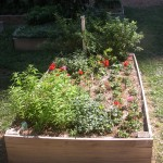 PHS raised garden bed